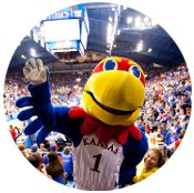 KU JAYHAWK BASEKTBALL AT ALLEN FIELDHOUSE