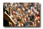 http://tickets.zvents.com/concerts.aspx;Concerts